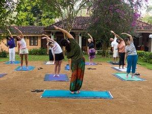 11-Daagse Detox & Yoga Retraite in Kalutara, Sri Lanka