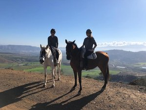 5 Day Bronze Package: Luxury Self-Catering Horse Riding Holiday in Andalusia