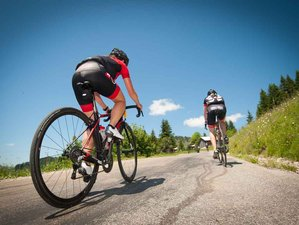 6 Days North to South Bike Tour in Alsace, France