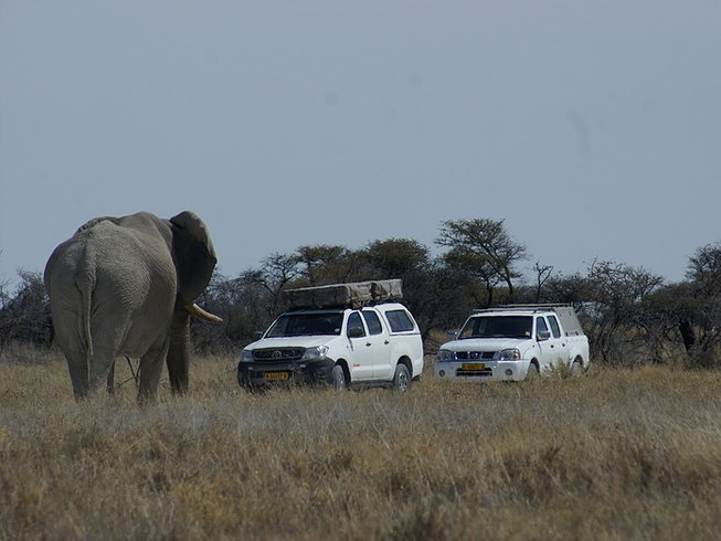 21 Days Self-Drive Safari in Botswana, Namibia, and Zimbabwe