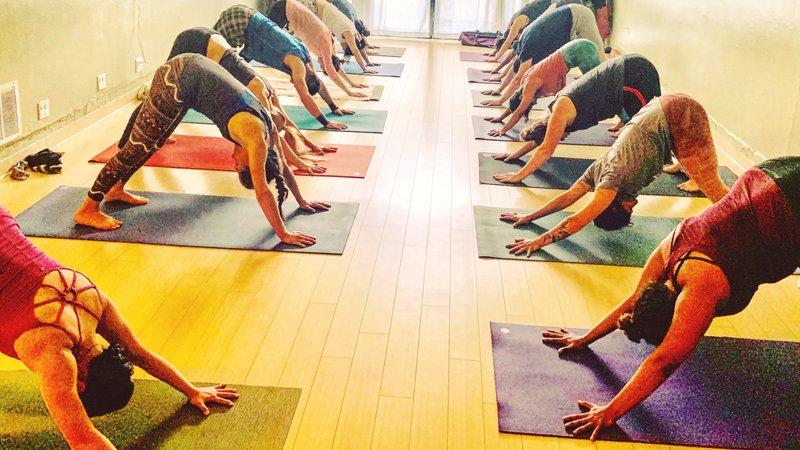 18 Day 200hr Ryt Yoga Teacher Training Holistic Approach Ashtanga Vinyasa Immersion Study In Maui Bookyogaretreats Com