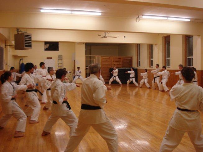 4 Days Powerhouse Karate Training and Seminar in Ottawa, Canada