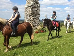 8 Days Intensive  Equestrian Course for Teenagers in Dublin, Ireland