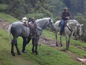 8 Days Ajusco Volcanoes and Wilderness Adventures and Ranch Vacation in Mexico City, Mexico