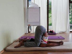 30 Day RYT 200-Hour Online Hatha Yoga Teacher Training Course