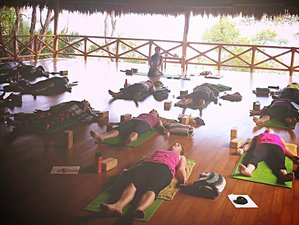 8 Days Goddess Rising Yoga Retreat in Mexico