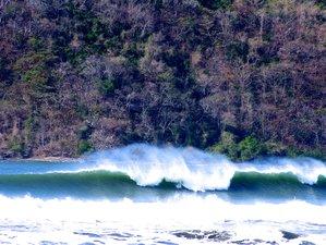7 Days SURFCAMP GUANICO in Los Santos, Panama