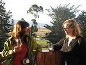 3 Days Grape Escape Girls Weekend New Zealand Wine Tour