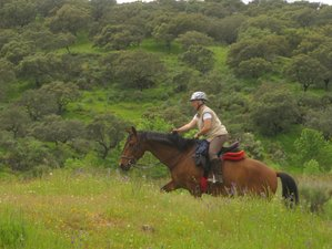 7 Days Conquistadors Progressive Trail Riding Holiday for Experienced Riders in Caceres, Spain