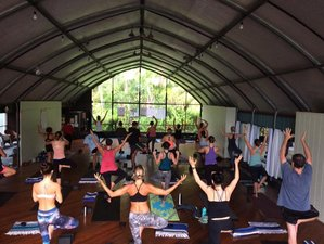 25 Days Yoga Teacher Training in Mexico