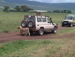 7 Days Game Parks Safari in Kenya