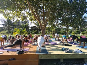 3 Days Ayurveda for Daily Life Retreat with Leela Mata in Florida, USA