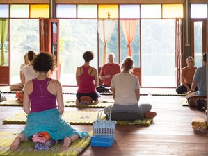 11 Days Meditation and Yoga Retreat in Thailand
