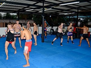 1 Year Muay Thai Training in Thailand