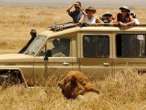 5 Days Optimistic Serengeti and Ngorongoro Safari in Tanzania