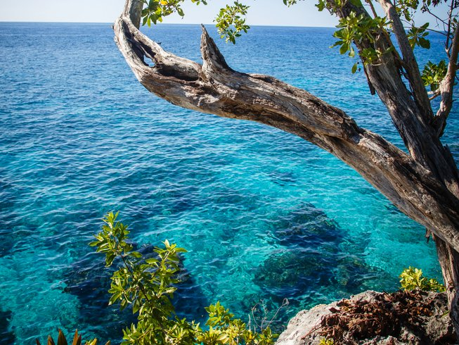 8 Days Bliss Immersion Yoga Retreat in Negril, Jamaica