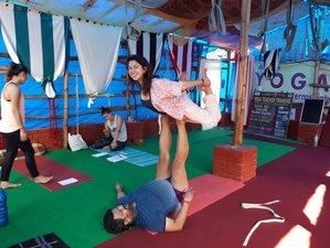7 días retiro de yoga y curso de pranayama en Dharamsala, India