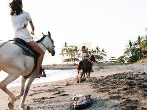4 Day Beautiful Beach and Jungle Horseback Riding Holiday in Mal Pais, Puntarenas