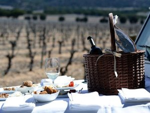 8 Day The Ultimate Luxury Private Culinary Tour of Northern Spain