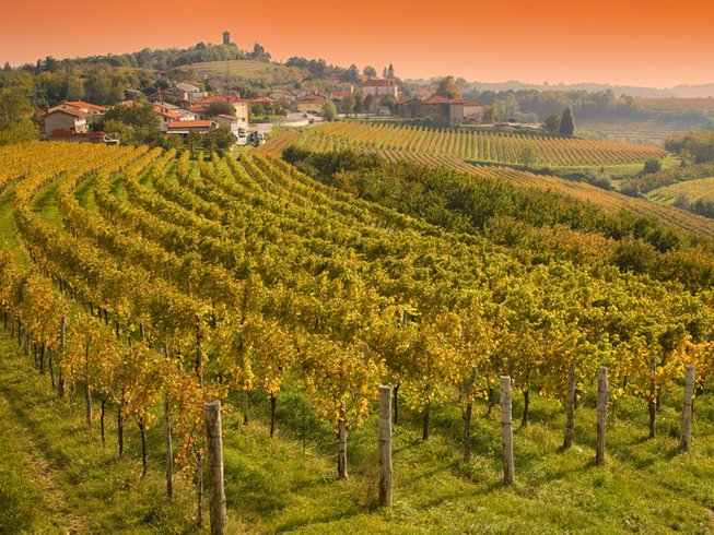 COOKING AND WINE TASTING HOLIDAY IN SLOVENIA