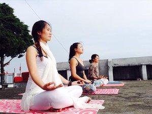 27 Days 200-Hour Hatha Yoga Teacher Training in India