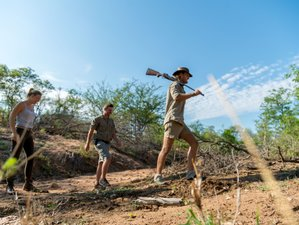 3 Days Walking Safari in Kruger National Park, South Africa