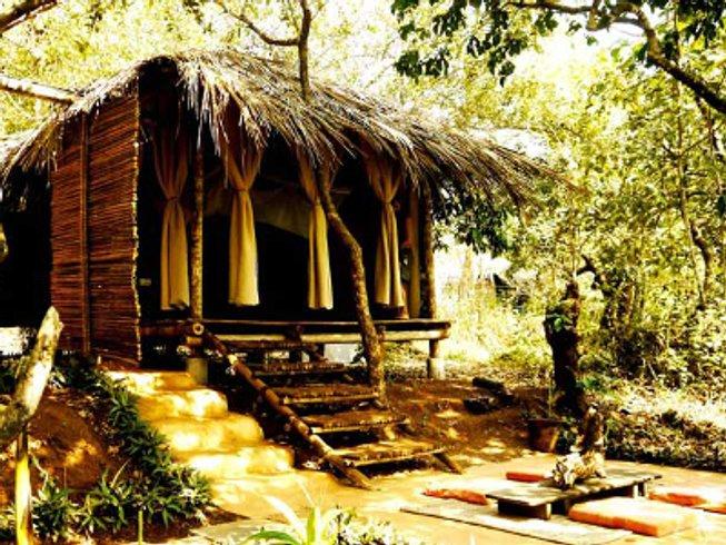 8 Days Elemental Yoga and Meditation Retreat in India