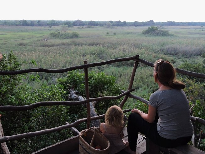 4 Days Incredible Bat Safari in Zambia