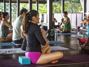 6 Days Detox Yoga Retreat in Koh Samui, Thailand