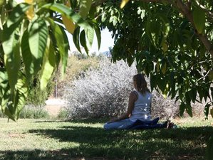 7 Days Meditation Retreat in Spain