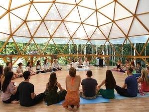 12 días profesorado de meditación y yoga de 100 horas en Rishikesh, India