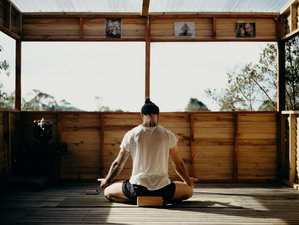 Meditation & Pranayama Classes with Karma Pema