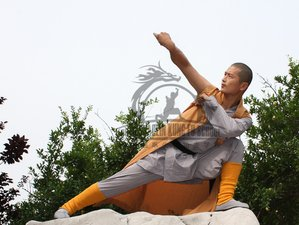 3 Month Advanced Shaolin Kung Fu in Qufu, Shandong