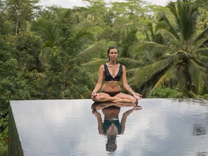 "7 Day Premium ""Divine Body"" Yoga & Raw Food Detox Retreat in Bali"