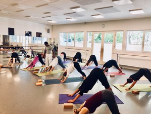 14 Day 100 Hours Hatha Yoga Teacher Training in Vaucluse, Provence
