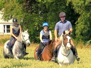 7 Days Economy Horse Riding Holiday Ireland
