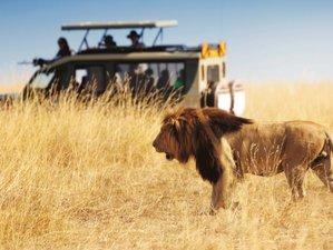 5 Days Amazing Wildlife Safari and Big Five Adventure in Tanzania