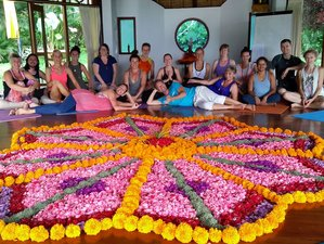 23 Days 200-Hour Yoga Teacher Training in Bali