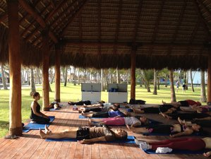 4 Days of Yoga, Slow Food, and Equine Therapy Retreat in Samana, Dominican Republic
