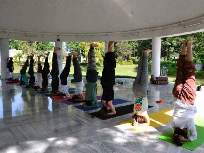 29 Days 200 Hour Yoga Teacher Training in Rishikesh