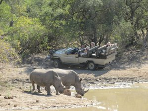 12 Days Luxury Safari in Kenya