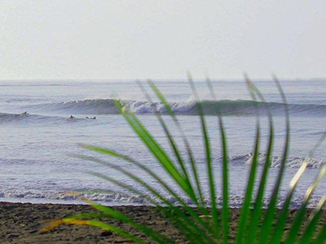 15 Days Vigorous Surf Camp in Los Santos, Panama