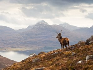 8 Days Unique Scottish Cultural & Cooking Vacation in Mid Argyll, Scotland