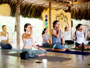 6 Day Cultural Immersion and Self-Realization Yoga Retreat Reunion in Magdalena