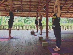 7 jours en stage de yoga holistique pour le cancer et les maladies chroniques à Phuket, Thaïlande
