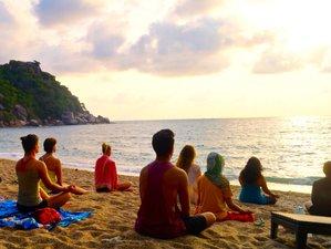 8 días retiro de meditación y yoga en Ko Phangan, Tailandia