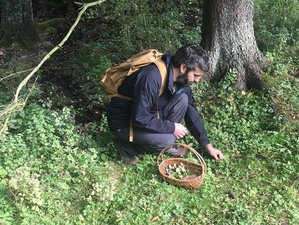 4 Days Foraging Trip and Cooking Holiday in Crete