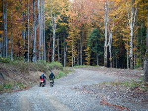 Trail riding tours
