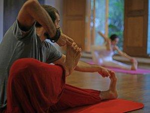 12 Days 100-Hour Hatha Yoga Teacher Training Mysore, India