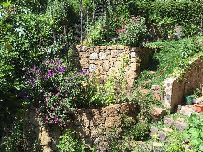 5 Days Immersion Private Yoga Retreat in Guatemala